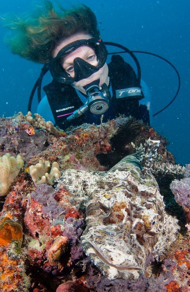 Khám phá những rặng san hô tuyệt đẹp dưới lòng biển là trải nghiệm khó quên của du khách.