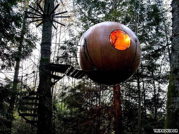 8. Free Spirit Spheres, British Columbia, Canada. Nằm ở vùng rừng nhiệt đới ven biển của thành phố Vancouver. Điểm đặc biệt là khách sạn được treo trên cây mang lại cho du khách những trải nghiệm độc đáo sống cùng thiên nhiên. Du khách đi lên các phòng nghỉ của khách sạn bằng những bậc thang xoắn ốc, uốn lượn.