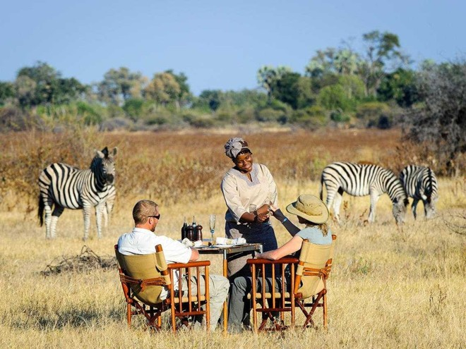 Ăn sáng và ngắm ngựa vằn ở khu trại Little Mombo, đồng bằng Okavango, Botswana. Little Mombo cũng được tạp chí Travel + Leisure đánh giá là khách sạn tuyệt nhất thế giới.