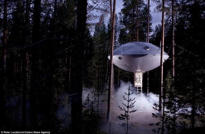 Dạo bước trong khu rừng yên tĩnh ở phía bắc Stockholm, du khách sẽ bắt gặp một công trình bằng kim loại kỳ lạ ở độ cao 6 m.