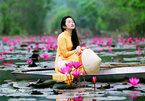 Độc đáo dòng suối hồng nhuộm kín hoa súng ngay gần Hà Nội