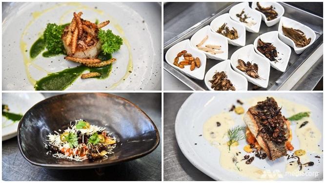 Các loại sâu và côn trùng có rất nhiều protein, có thể thay thế các loại thịt cá thông thường và anh tin rằng sẽ làm rung chuyển ngành công nghiệp nhà hàng ở Thái Lan . Ảnh: CNA