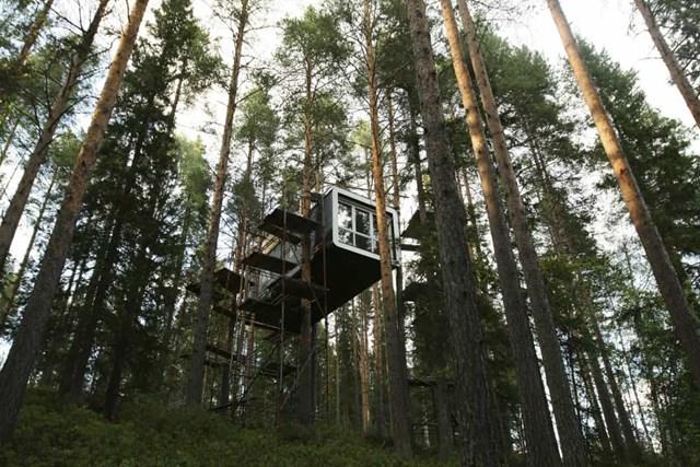 The Treehotel, Thụy Điển nằm giữa những tán cây cao của rừng thông phía Bắc Thụy Điển, khách sạn này kết hợp sự yên bình của thiên nhiên hoang sơ với thiết kế và kiến trúc đương đại.